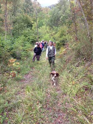truffle-hunt2
